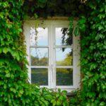 avioiding loneliness in isolation