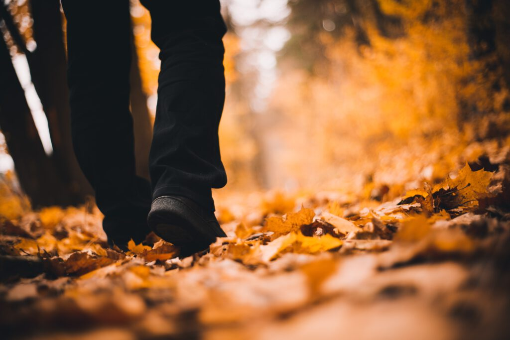 dressing for autumn walks